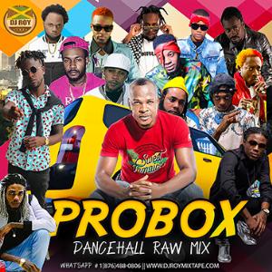 dj roy probox dancehall mix 2019