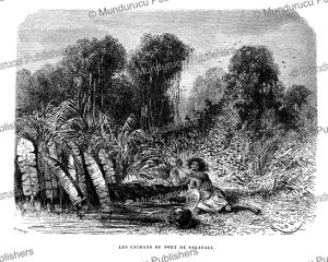 cayman in the sarayaku river attacking a woman, peru, e´douard riou, 1866