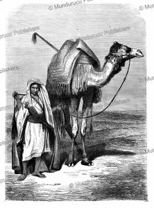 bedouin with his camel near the sinai¨, h. pottin, 1864