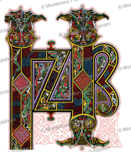 celtic illuminated initials inprin from the book of lindisfarne, j.h. galle´e, 1895