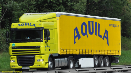 First Additional product image for - Aquila 2019 skin ETS2
