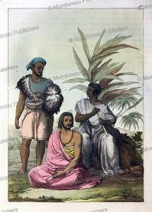 hazorta family, abyssinia, gallo gallina, 1819
