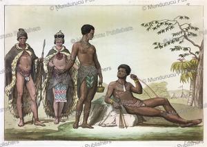 hottentots, gallo gallina, 1819.tif