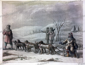 dog sledge of kamchatka, gallo gallina, 1818