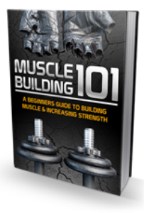 how to build muscle 101