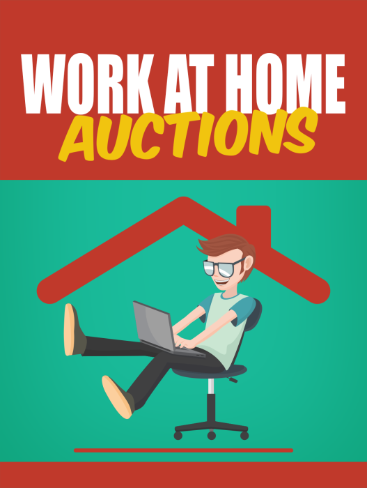 First Additional product image for - Work At Home Auctions