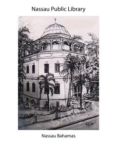 nassau public library 16x20