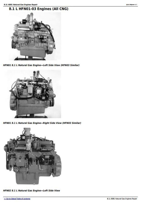 First Additional product image for - Powertech 8.1L 6081 Natural Gas Engines Technical Service Manual (CTM87)