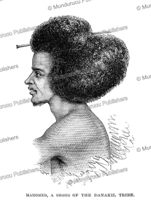 ali, a muslim of the shoho tribe of abyssinia, the illustrated london news, 1868