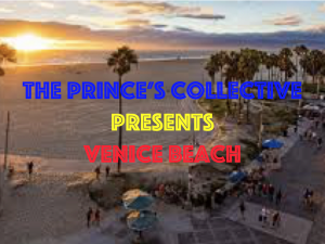 the prince's collective: venice beach