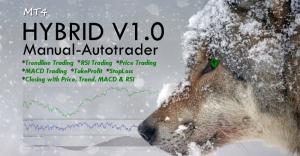 hybrid v1.0