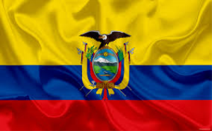 Email Data Ecuador | Documents and Forms | Business