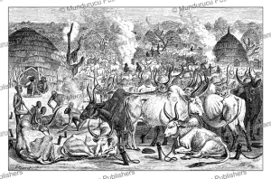 dinka tribe and cattle-park, south sudan, j. cooper, 1873