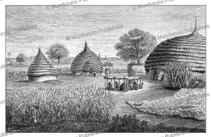 dinka village, south sudan, j. cooper, 1873