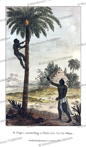 negro ascending a palm tree, west africa, frederic shoberl, 1821