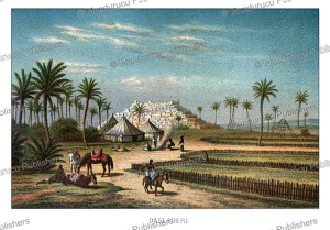 the oasis of ederi (fezzan), libya, after adolphe rouargue, 1879