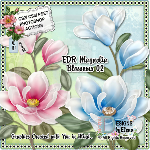 Magnolia Blossoms 02 | Other Files | Scrapbooking