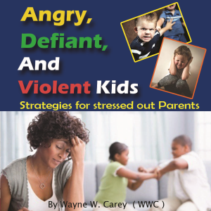 apex youth resources- angry, defiant and violent kids