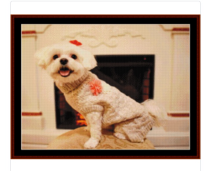 custom pattern by cross stitch collectibles