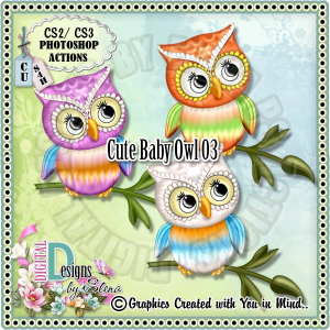 cute baby owl 03 ps action
