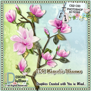 Magnolia Blossoms PS Action | Other Files | Scrapbooking