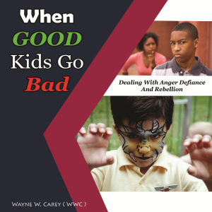 apex youth resources- when good kids go bad: dealing with anger, defiance, and rebellion