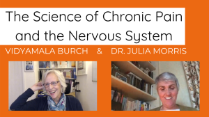 the science of chronic pain and the nervous system