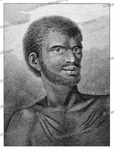 man of van diemen's land (tasmania), john webber, 1774