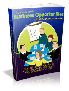 How to Identify Business Opportunities and Make the Most of Them | eBooks | Business and Money