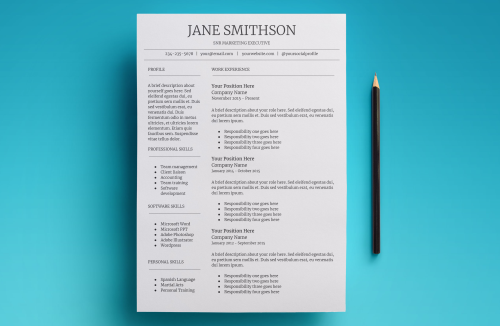 Second Additional product image for - Callisto Resume Template