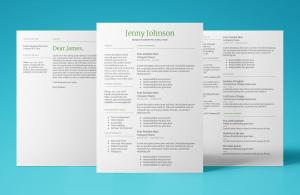mercury resume template