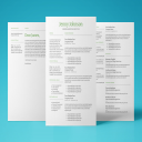 Mercury Resume Template   Documents and Forms   Resumes