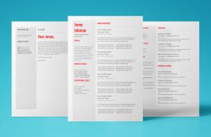 venus resume template