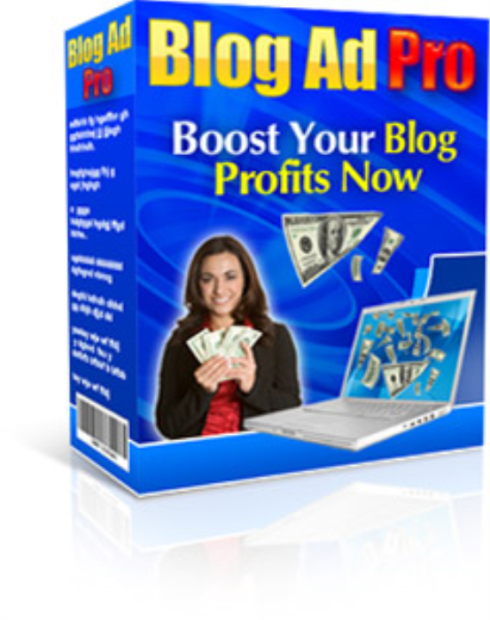 First Additional product image for - Blog Ad Pro