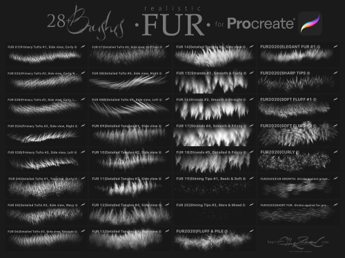 First Additional product image for - Realistic FUR Brushes for Procreate.
