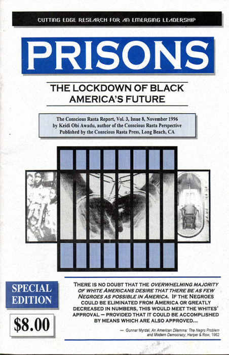 First Additional product image for - PRISONS: The Lockdown of Black (America's Future)