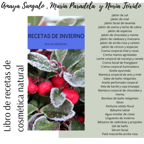 First Additional product image for - NEW libro recetas de invierno