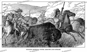 killing buffalo on the plains, g.a. custer, 1886