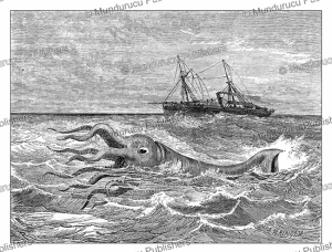 giant squid spotted at the coast of french guiana, e´douard riou, 1867