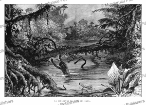 the snake from the bottom of the waters, french guiana, e´douard riou, 1895