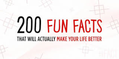 First Additional product image for - Fun facts to know
