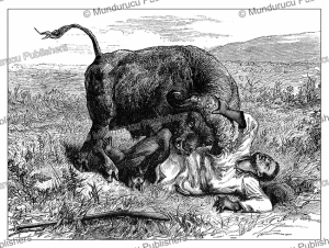 the death of the poor soudi, a helper of henry morton stanley in congo, 1885