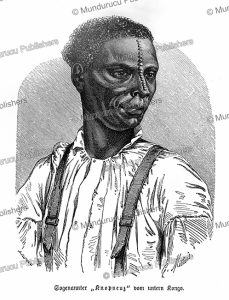 the so-called knot-nose of upper congo, a. gusman, 1885