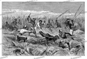 natives accompanying samuel white baker killing a crocodile, johann baptise zwecker, 1874