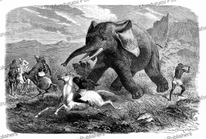 hamran arab killing an elephant with a sword with samuel white baker, abyssinia, emile bayard, 1872