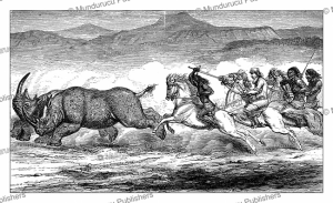 A rhinoceros hunt, Abyssinia, Samuel Baker, 1866 | Photos and Images | Digital Art