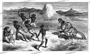 samuel baker witnesses a fight with a hippopotamus, abyssinia, johann baptiste zwecker, 1866