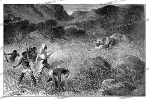The death of a lioness, with Samuel White Baker, Emile Bayard, 1872 | Photos and Images | Digital Art