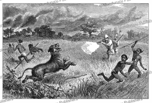 Sir Samuel White Baker shooting a charging lion, Uganda, Johann Baptise Zwecker, 1874 | Photos and Images | Digital Art