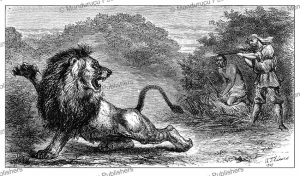 samuel baker has a close encounter with a lion, abyssinia, samuel baker, 1867